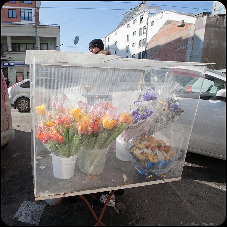 Цветы в вакууме - 8марта цветы уличное продавец тюльпаны праздник квадратное фото фотосайт
