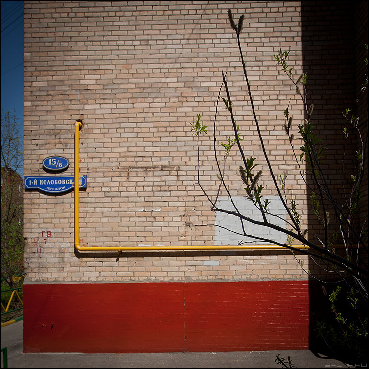 На колобковском весна - стена переулок газ ветка весна квадратное фото фотосайт