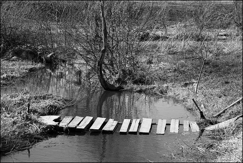 Зебра (переход) - переход мостик зебра деревня монохром фото фотосайт