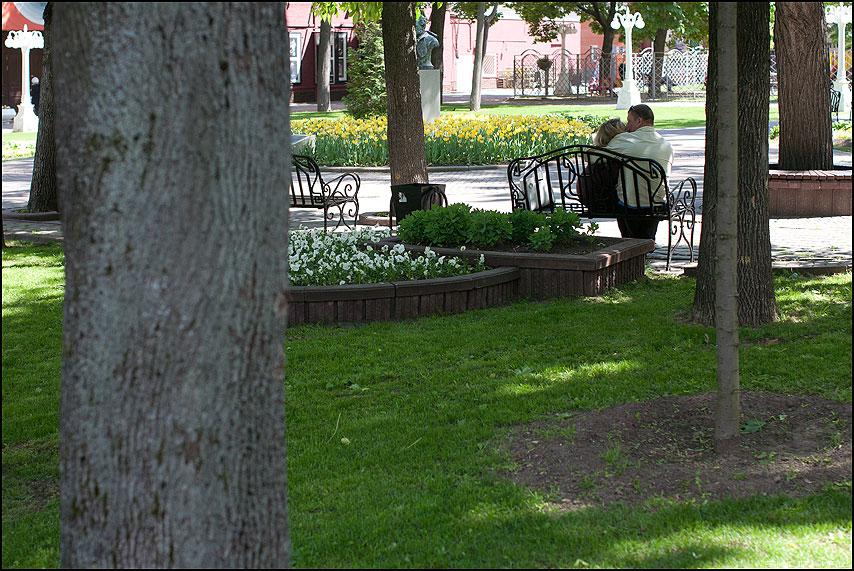 В парке - парочка поцелуй деревья любовь морковь фото фотосайт