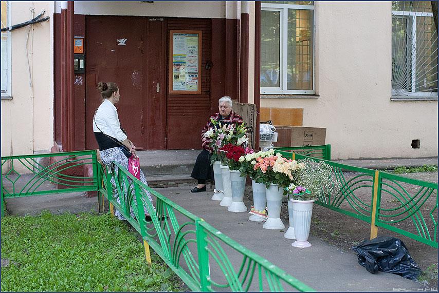 Приподъездные цветы - цветы продавать двор подъезд фото фотосайт