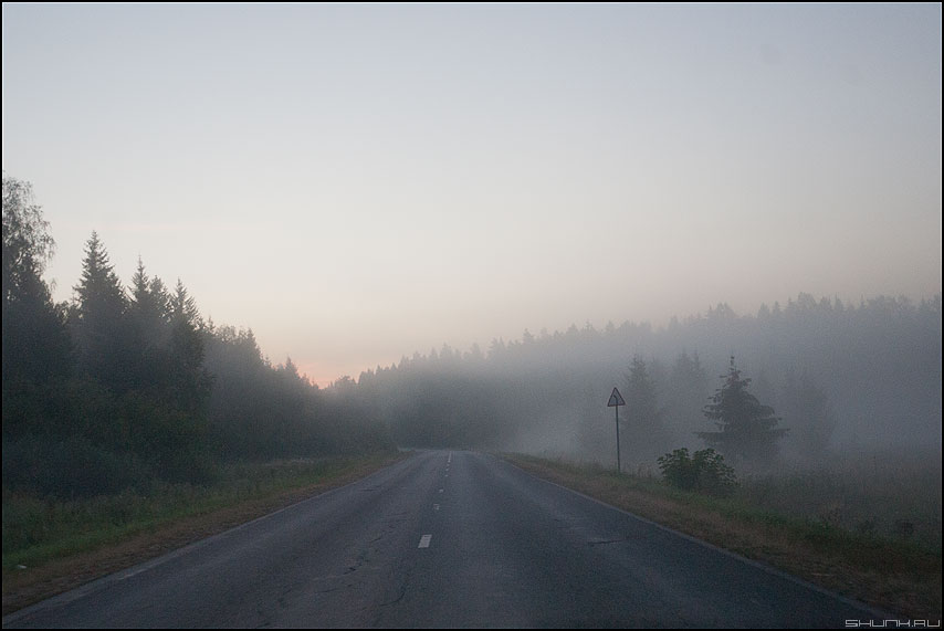 Августовские туманы - деревня дорога туманы знак поворот деревенское фото фотосайт