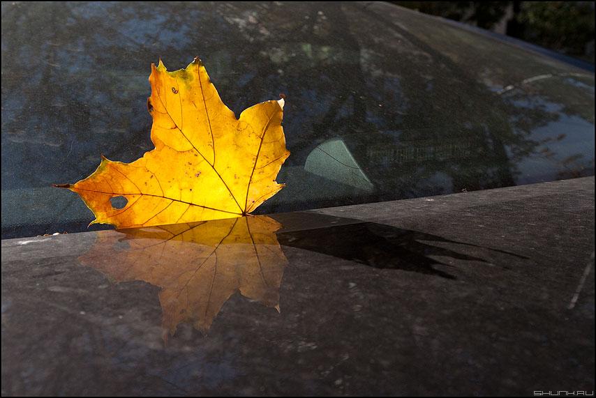 Л.И.С.Т. - осень авто лист автомобиль свет осеннее фото фотосайт
