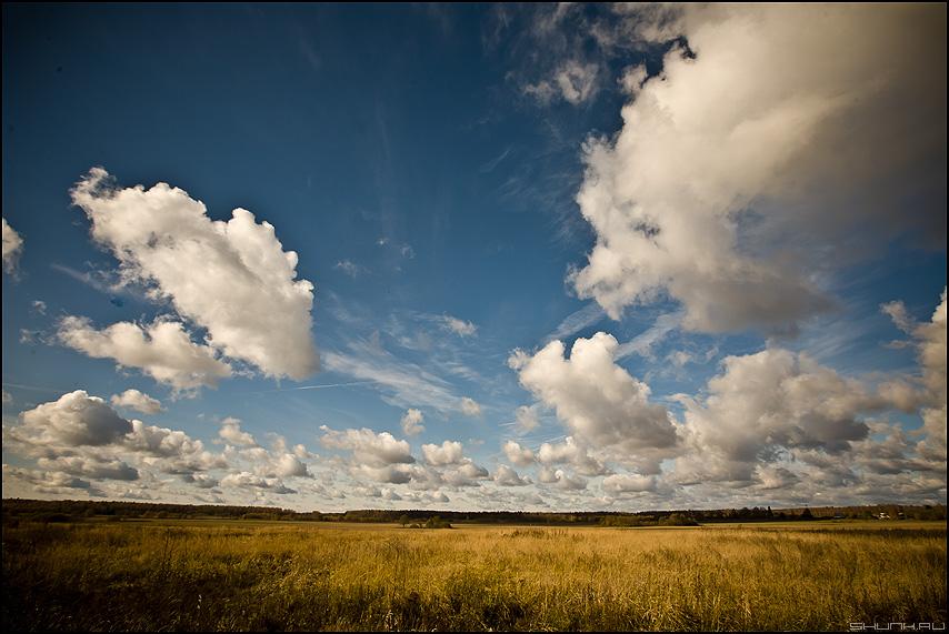 * * * - небо поле обработка облачка фото фотосайт