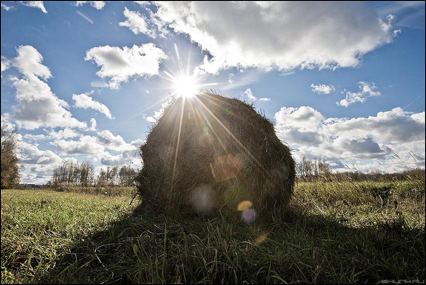 Лучистый катушек - небо солнце поле осеннее облачка фото фотосайт