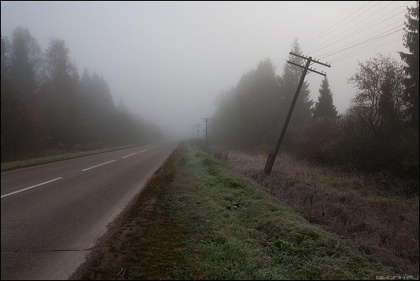 Осенние столбы - деревня дорога намоскву туман осктябрь холода фото фотосайт