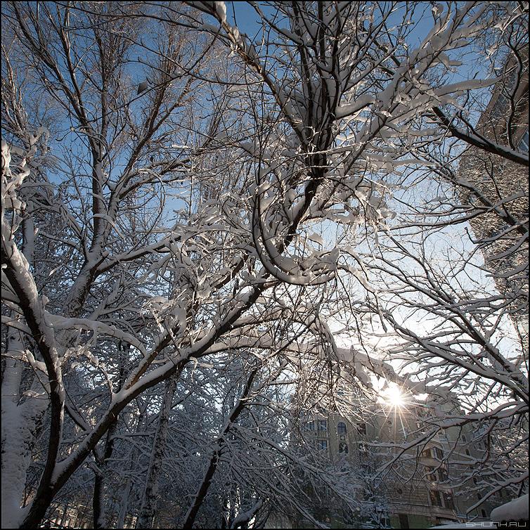 Февральский солнечный день - февраль двор снег солнце зима фото фотосайт