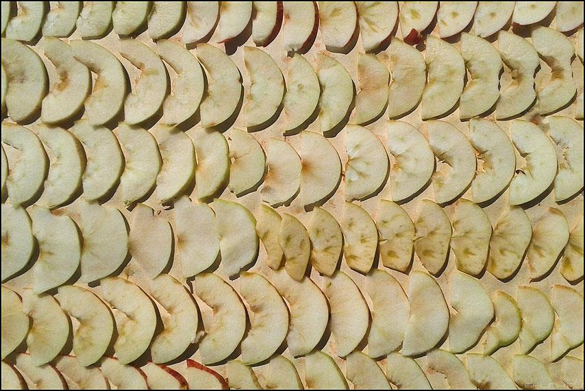 Яблочное настроение - яблоки нарезка лето сушить рабочий стол фото фотосайт
