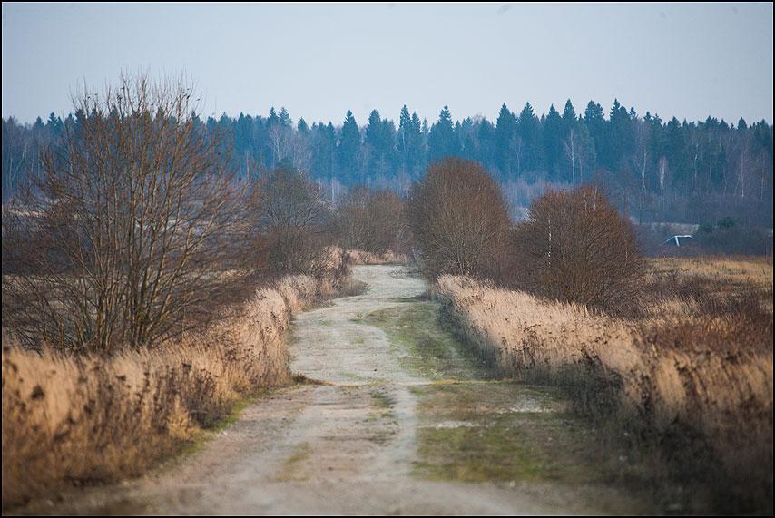 Дорога - дорога деревня осенью фото фотосайт