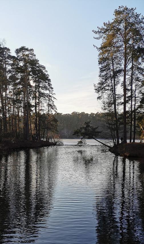 СерБор - серебрянный бор зима река сосны 2020 фото фотосайт