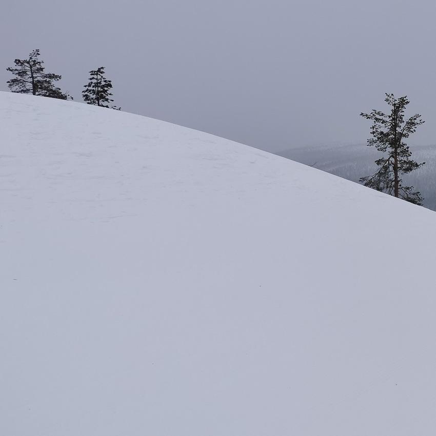 За бугром - леви зима 2020 бугор горки фото фотосайт