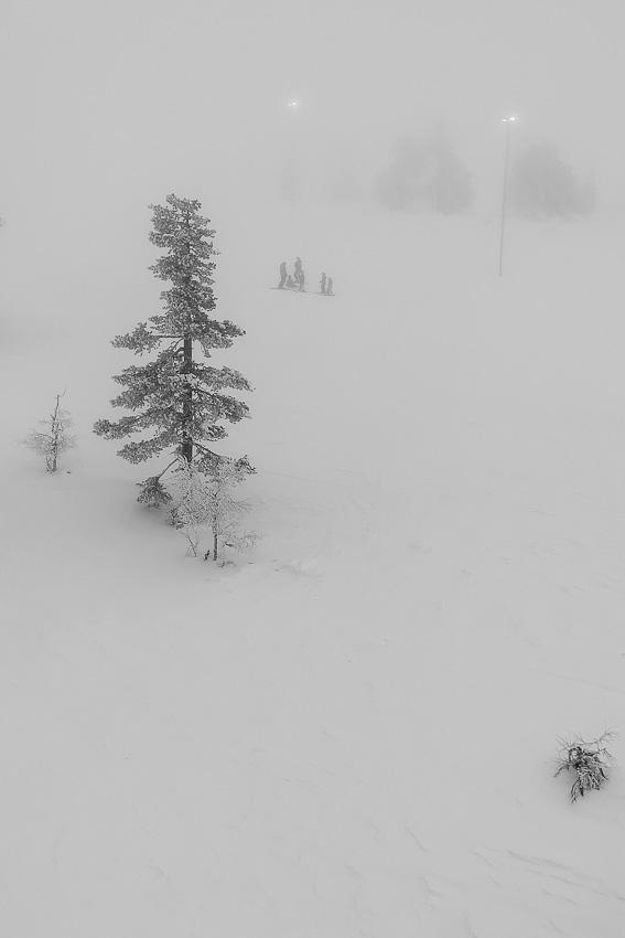 Горнолыжное - туман зима лес леви 2020 зимнее фото фотосайт