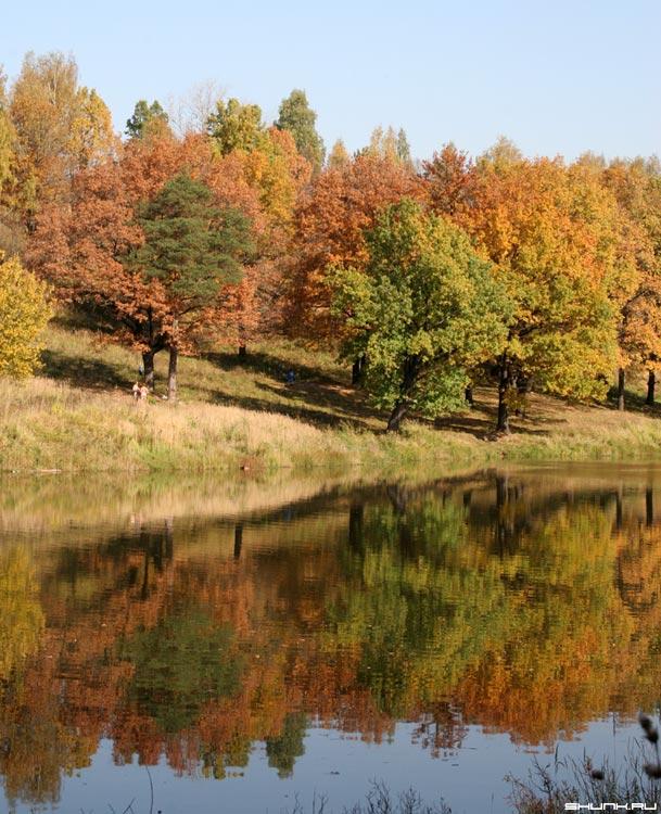 Цвета унылой поры - осень деревья берег серия времена года фото фотосайт
