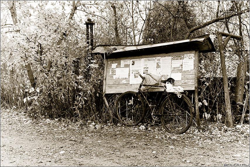 Из последних новостей - велосипед доска объявлений дача осень фото фотосайт