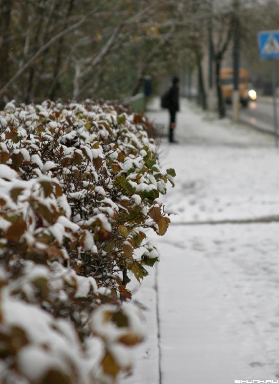 26 октября, первый снег - первый снег улица прохожий переход фото фотосайт