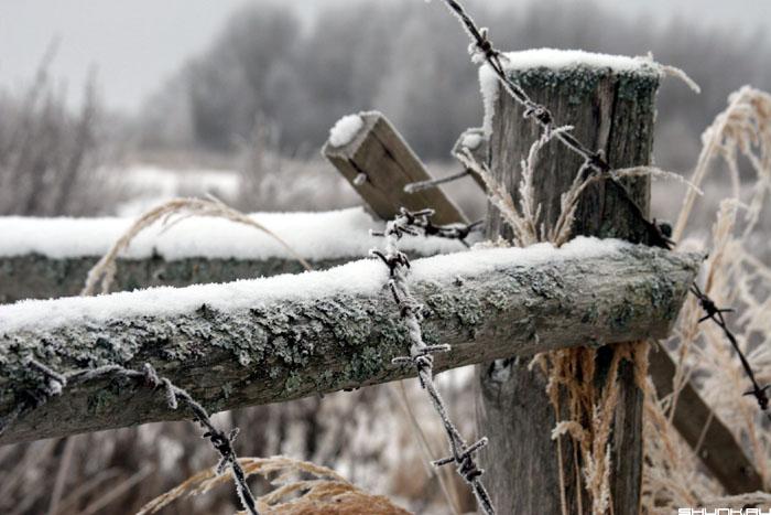 За забором - зима деревня забор колючка фото фотосайт