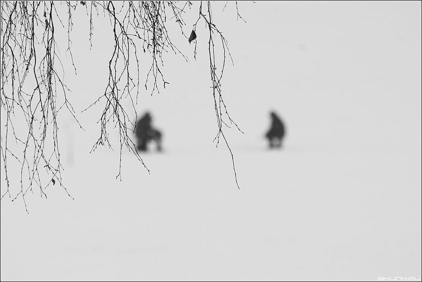 Излюбленная тема - рыбаки зима веточки фото фотосайт