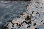 Отлив - порт берег море лед отлив