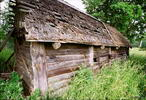 Этот старый сарай - лето деревня Рубцово Московской области