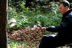 Хлебный мякиш сизым голубям - синицы рука лес дерево