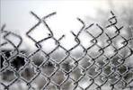 Забор - рабица забор иней